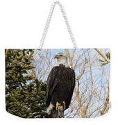 Eagle 6 Weekender Tote Bag