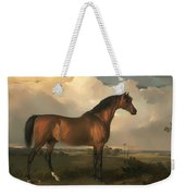 Eagle - A Celebrated Stallion Weekender Tote Bag