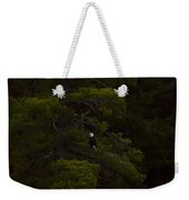 Eagle In The Green Weekender Tote Bag