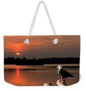 Eagle On Stump Overlooking Water At Sundown Weekender Tote Bag