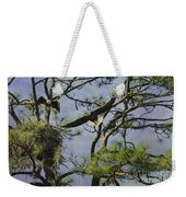 Eagle Pair And Nest Weekender Tote Bag