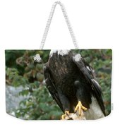Eagle Perched Atop Stump Weekender Tote Bag