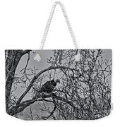 Eagles Along The Mississippi 2 Weekender Tote Bag