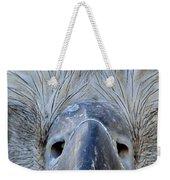 Eagle's Eyes Weekender Tote Bag