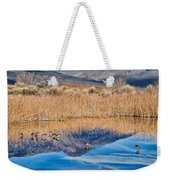 Early Bird Gets The Worm Weekender Tote Bag by Cat Connor