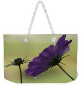 Early Dawns Light On Fall Flowers 01 Weekender Tote Bag