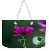 Early Dawns Light On Fall Flowers 03 Weekender Tote Bag