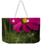Early Dawns Light On Fall Flowers V 03 Weekender Tote Bag