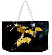 Early Fall Of  Downy Birch Weekender Tote Bag