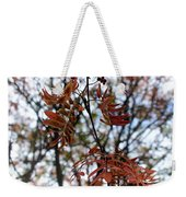 Early Fall Of Rowan Weekender Tote Bag