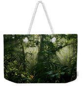 Early Morning Light In The Rain Forest Weekender Tote Bag