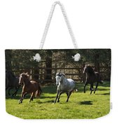 Early Morning Romp Weekender Tote Bag