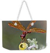 Eastern Amberwing Dragonfly Weekender Tote Bag