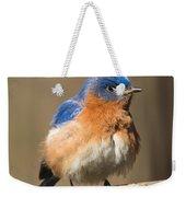 Eastern Bluebird Male Ruffled Weekender Tote Bag