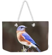 Eastern Bluebird - The Old Fence Post Weekender Tote Bag