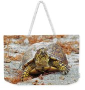 Eastern Box Turtle Weekender Tote Bag
