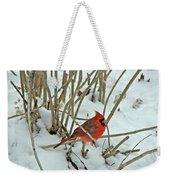 Eastern Cardinal - Cardinalis Cardinalis Weekender Tote Bag