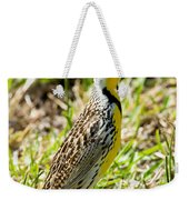 Eastern Meadowlark Weekender Tote Bag