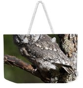Eastern Screech-owl Otus Asio Weekender Tote Bag
