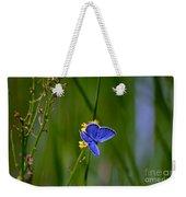 Eastern Tail Blue Butterfly Weekender Tote Bag