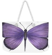 Eastern Tailed Blue Butterfly Weekender Tote Bag by Anonymous