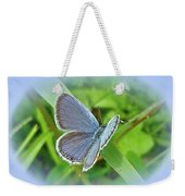 Eastern-tailed Blue Butterfly - Cupido Comyntas Weekender Tote Bag