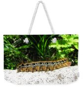 Eastern Tent Caterpillar Weekender Tote Bag