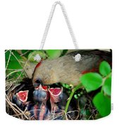 Eat Up Weekender Tote Bag by Frozen in Time Fine Art Photography