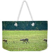 Eating Cranes Weekender Tote Bag