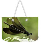 Ebony Jewelwing Fluttering For Male Weekender Tote Bag