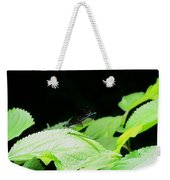 Ebony Jewelwing Male Weekender Tote Bag