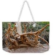 Eccentric Tree Root Growing In Ein Gedi Weekender Tote Bag
