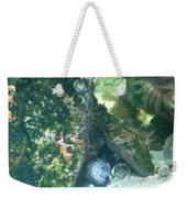 Eel Waiting To Snatch Something For Lunch Weekender Tote Bag