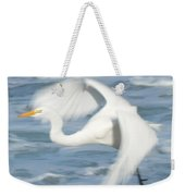 Egert In Flight Detail Weekender Tote Bag