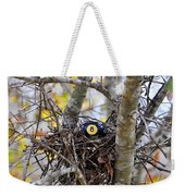 Eggstraordinary Weekender Tote Bag by Al Powell Photography USA