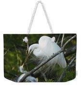 Louisiana Egret With Babies In Swamp Weekender Tote Bag