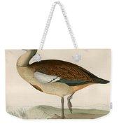 Egyptian Goose Weekender Tote Bag