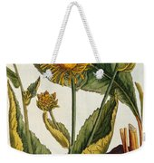 Elecampane Weekender Tote Bag by Elizabeth Blackwell