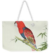 Electus Parrot On A Bamboo Shoot Weekender Tote Bag