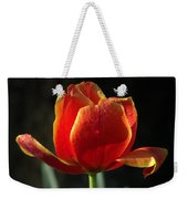 Elegance Of Spring Weekender Tote Bag