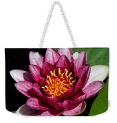 Elegant Lotus Water Lily Weekender Tote Bag