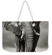Elephant Approach From The Front Weekender Tote Bag