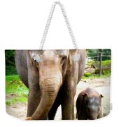Elephant Baby Olli With Mommy Weekender Tote Bag