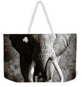 Elephant Bull Weekender Tote Bag