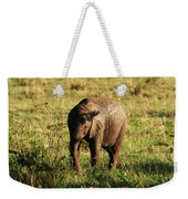 Elephant Calf Weekender Tote Bag