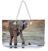 Elephant Calf Spraying Water Weekender Tote Bag