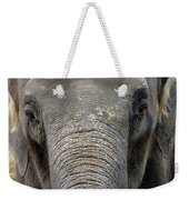 Elephant Close Up 1 Weekender Tote Bag