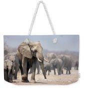 Elephant Feet Weekender Tote Bag