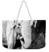 Elephant IIi Weekender Tote Bag