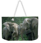 Elephant Ladies Weekender Tote Bag
